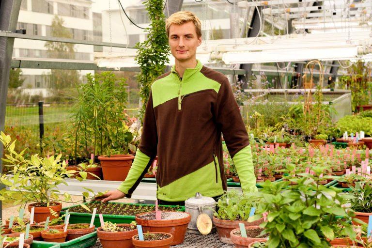 Junger Mann im Gewächshaus an Tisch mit Pflanzen