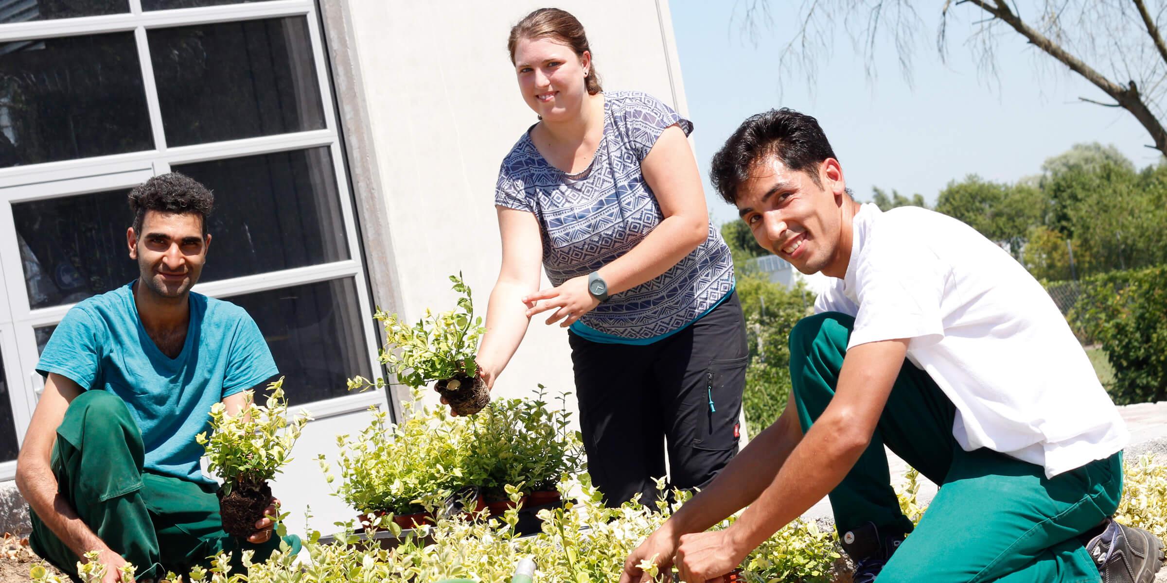Zwei Gärtner und eine Frau stehen an einem Beet und gucken in die Kamera