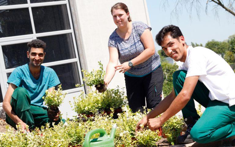 Geflüchteter nimmt an dem Projekt Wirtschaft Integriert im bbw Südhessen teil und arbeitet mit Ausbildern aus dem grünen Bereich im Garten