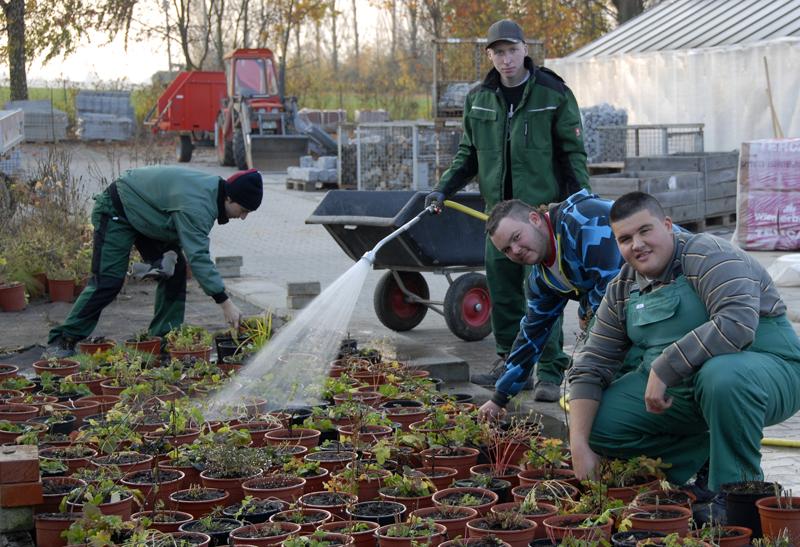 Azubi-Team aus dem Bereich Gartenbau bei der Arbeitbei