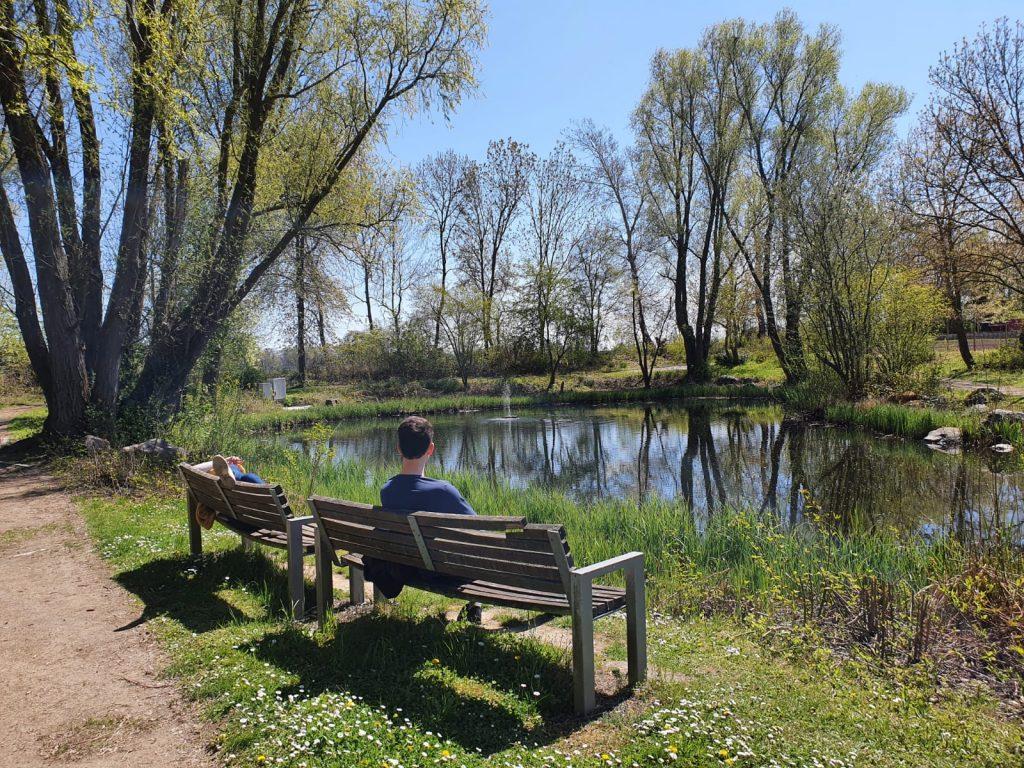 chillen Am Teich im bbw Südhessen