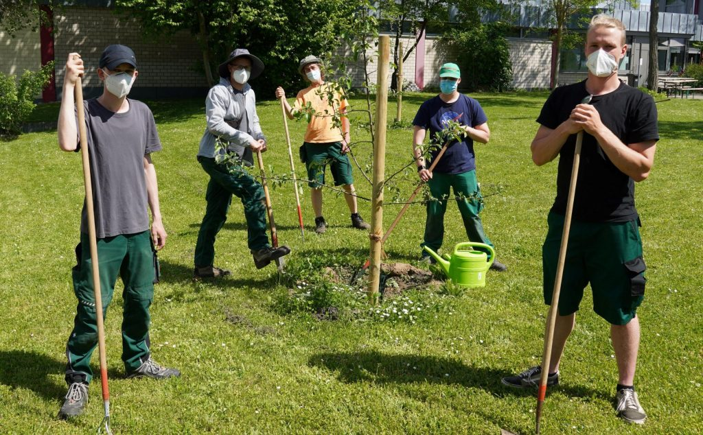 Teilnehmende kümmern sich um junge Obstbäume im bbw Südhessen